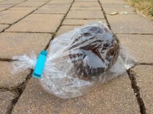 Noce di cocco nel sacchetto